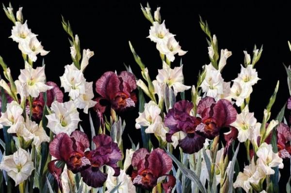 Baumwolljersey Digitaldruck Lilien, schwarz